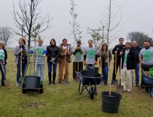 Arbor Day At War Veteran's Home
